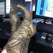 Go Texan Day February 2014 gold cowboy boots in desk