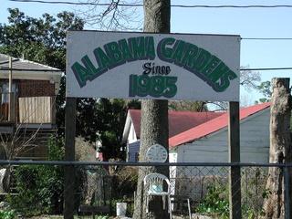 News_Joel Luks_community gardens_Alabama Gardens