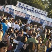News_Greek Festival_crowd