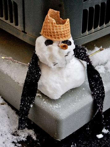 News_Snow_Dec. 2009_little snowman