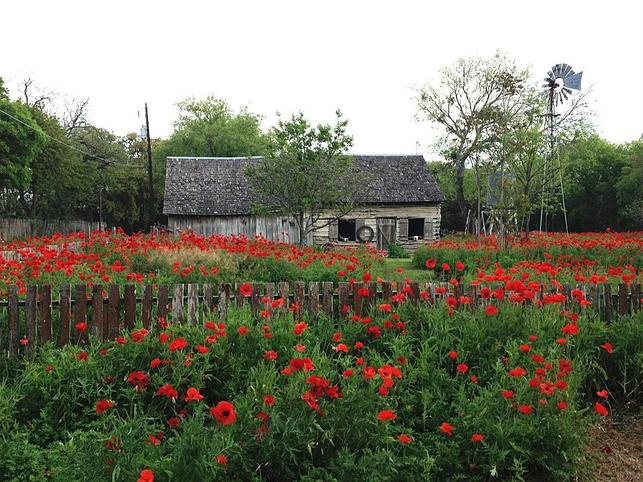 Castroville, Texas
