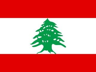 Places_Food_Cafe Lili_Lebanese flag_Lebanese food