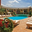News, Shelby, Hotel ZaZa Houston pool, July 2014