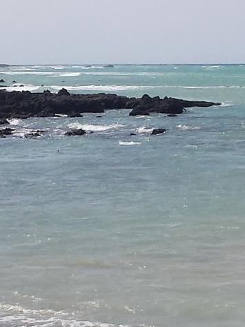 Jane Howze Postcard from the Big Island Hawaii December 2013 ocean