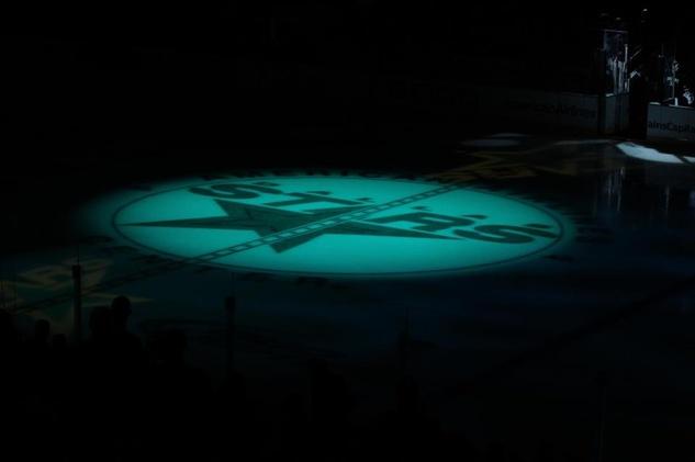 Dallas Stars logo on ice