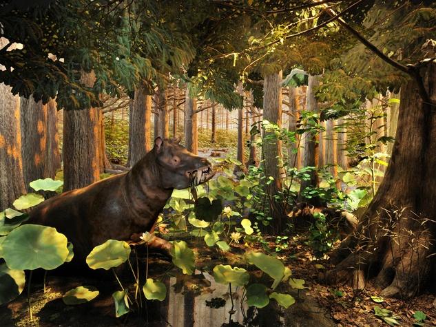 Extreme Mammals exhibit diorama