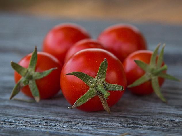 Punta Banda tomatoes
