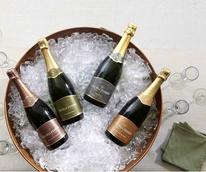 Gloria Ferrer, sparkling wine