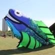 348 Hermann Park Kite Festival March 2014