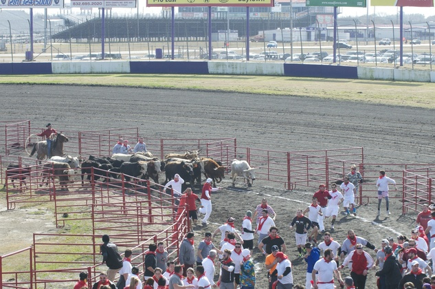 Great Bull Run 05
