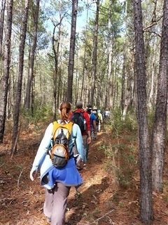 """Bayou City Outdoors and REI present """"Hiking 101"""""""