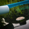 Photo of mosquito dunk in water with white PVC pipe