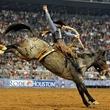 Rodeo Houston cowboy riding a bucking horse