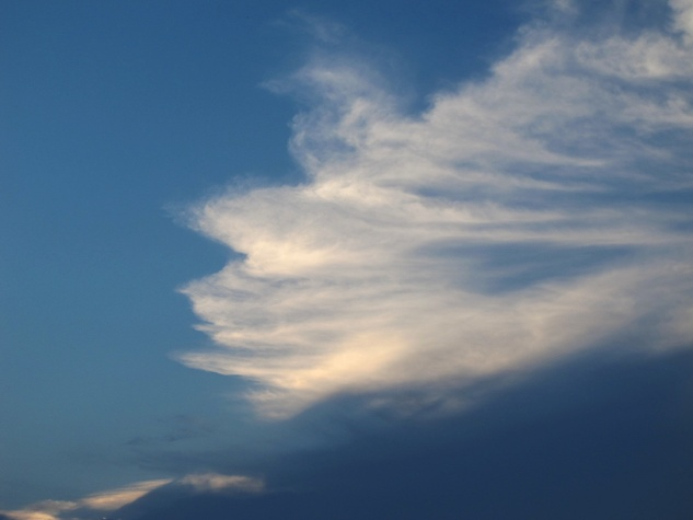 1. Katie Oxford sunsets August 2014 Horse's Mane