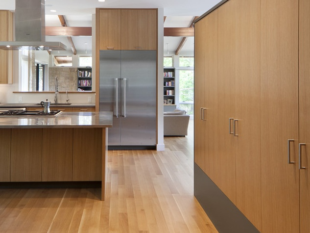 Houzz Austin home tour healthy house modern kitchen