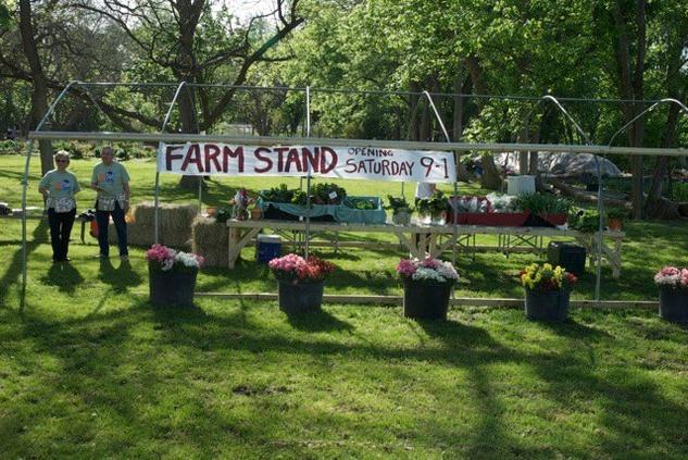 Springdale Farm in Austin, TX.