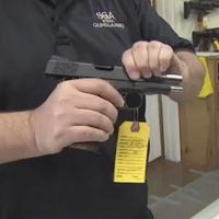 Gun control concealed handgun license