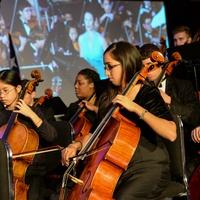 Virtuosi of Houston 2016 Annual Concert and Dinner Gala