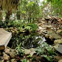 Austin_photo: Places_Outdoors_Zilker Botanical Gardens_pond