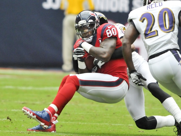 Andre Johnson Ravens catch