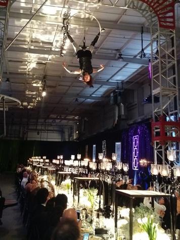 Acrobats at Lucinda Loya's birthday celebration February 2014