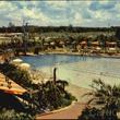 Shamrock Hotel Swimming Pool