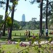 News_Memorial Park_Memorial Drive_park