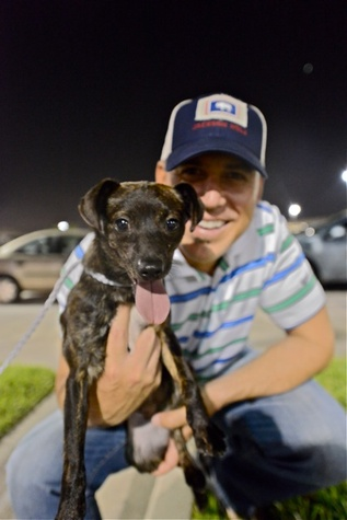 AmCap Humane Society Rescue