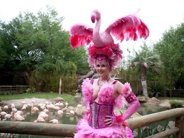 13 Houston Zoo Flock Pink Flamingo Party May 2013 Kasi Kubiak