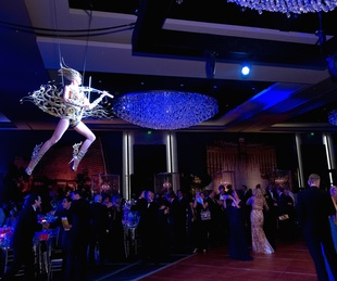 Houston, Houston Symphony Ball, May 2017, aerialist