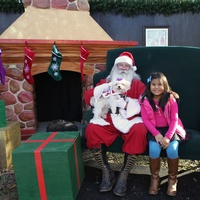 City of Mesquite presents Christmas in the Park