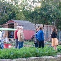1 Plant it Forward Farm Dinner November 2013