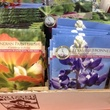 Wabash Antiques & Feed wildflower seeds