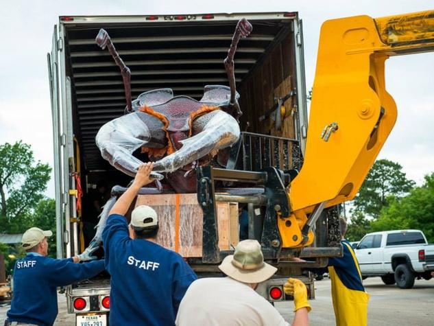 3 Extreme Bugs at Houston Zoo unloading May 2014