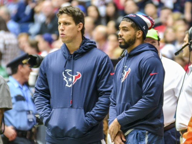 Arian Foster Texans Pats sidelines