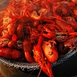 News_Marene Gustin_crawfish