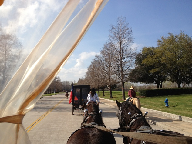 Texas Independence Trail Ride_horses_RodeoHouston