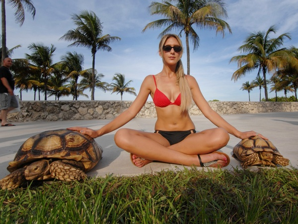 News_Tortoise_blonde_model