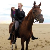 QFest 2014 film screening: Of Girls and Horses