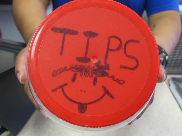 Katie Oxford tips tip jar February 2015