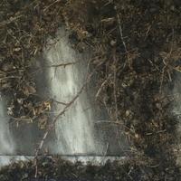 "grayDUCK Gallery presents ""What a Bloody Mess"": Hollis Hammonds, Jenn Hassin & Claude Van Lingen opening reception"