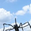 spider Hermann Park Gen. Sam Houston statute April 2014