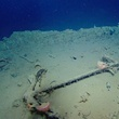Galveston shipwreck discovery July 2013 bow