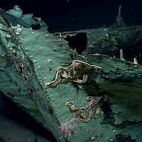 Galveston shipwreck discovery July 2013 hull