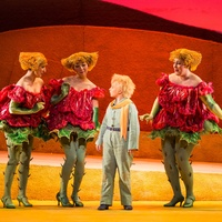 Houston Grand Opera The Little Prince