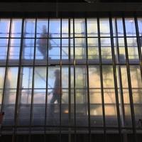 Menil Drawing Institute: construction progress