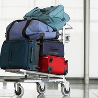 United Airlines baggage luggage on cart