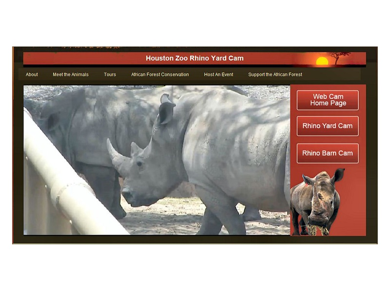 News_Houston Zoo_rhino cam