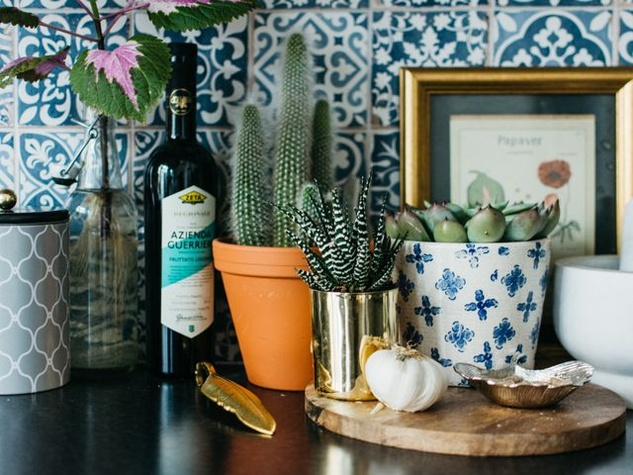 Houzz, Favorite Succulents to Grow Indoors, February 2018