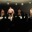 News_Sumo wrestlers_Men of the Menil_March 2012